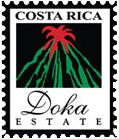 Doka Estate